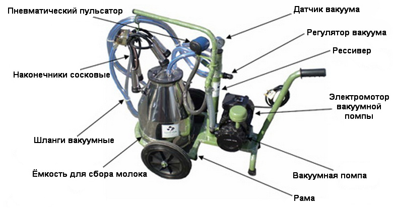Схема и устройство доильного аппарата для коров.