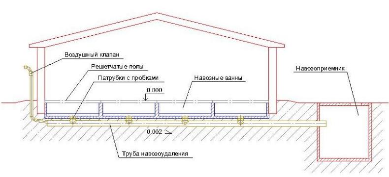 СХема чертеж устройства самосплавной системы навозоудаления с щелевыми полами.